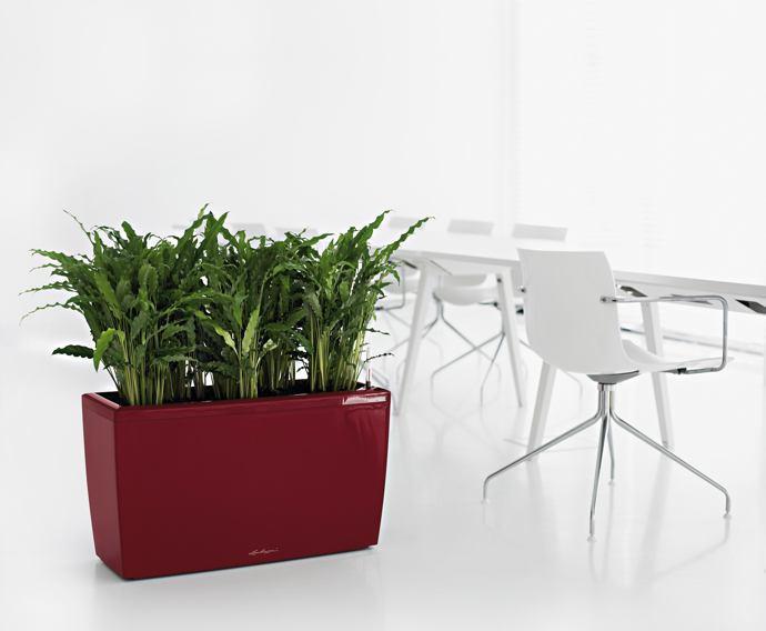 Vasi e piante set 2