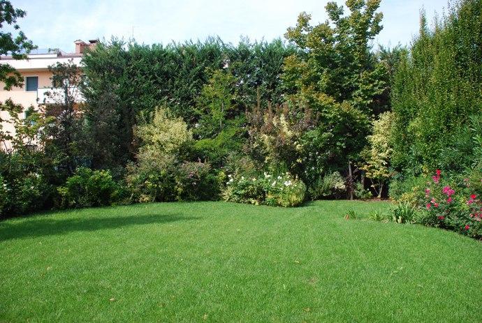 Progettazione giardino 2